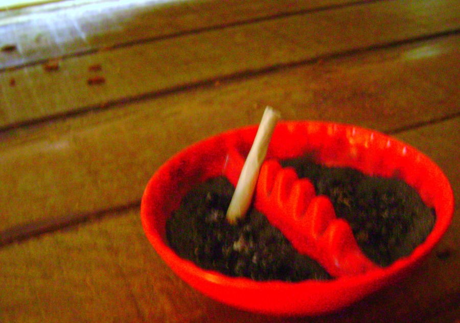 Red Ashtray - 02 (June 2011)